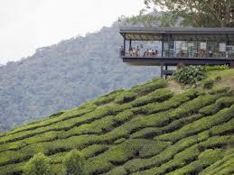 Sungai palas tea house
