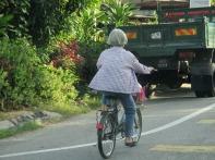 Intrepid Ipoh cyclist