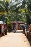 Road through the village
