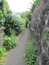 Taking the walkway to Mount Eden/Maungawhau