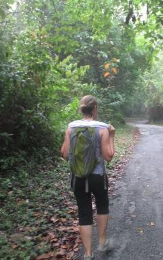 jungle-walk