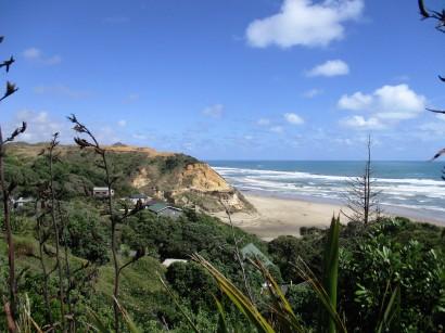 Bayly's beach, Northland