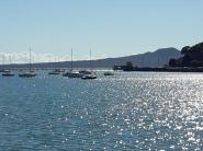Okahu Bay in the sunshine